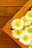 Πλαστό πλαίσιο λουλουδιών Στοκ εικόνα με δικαίωμα ελεύθερης χρήσης