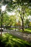 Πλατεία του Ντόρτσεστερ Στοκ εικόνα με δικαίωμα ελεύθερης χρήσης