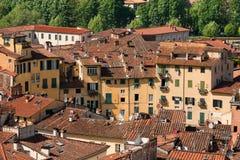 Πλατεία Anfiteatro - Lucca Τοσκάνη Ιταλία Στοκ Εικόνες