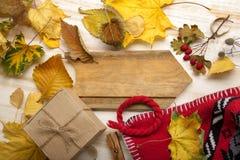 Πλεκτά ΚΑΠ φύλλα δώρων φθινοπώρου ακόμα ζωή και ξηρά μούρα Στοκ φωτογραφία με δικαίωμα ελεύθερης χρήσης