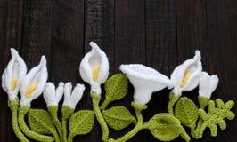 Πλεκτό πράσινο φύλλο και άσπρο υπόβαθρο λουλουδιών Στοκ Φωτογραφία