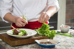 Πλευρά αρνιών με τα λαχανικά και καρύκευμα στο ξύλινο υπόβαθρο Στοκ φωτογραφία με δικαίωμα ελεύθερης χρήσης