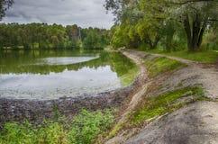 Πλευρά της λίμνης Στοκ εικόνα με δικαίωμα ελεύθερης χρήσης