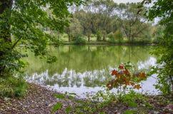 Πλευρά της λίμνης Στοκ φωτογραφία με δικαίωμα ελεύθερης χρήσης