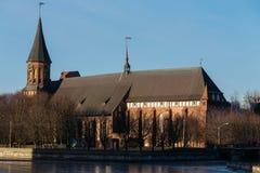 Πλευρά του καθεδρικού ναού Konigsberg σε Kaliningrad Στοκ εικόνα με δικαίωμα ελεύθερης χρήσης