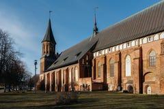 Πλευρά του καθεδρικού ναού Konigsberg σε Kaliningrad Στοκ φωτογραφίες με δικαίωμα ελεύθερης χρήσης
