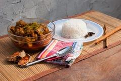 Πλευρό και ρύζι χοιρινού κρέατος με το πικάντικο κάρρυ Στοκ εικόνες με δικαίωμα ελεύθερης χρήσης