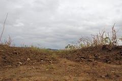 Πληγείσες από την ξηρασία συγκομιδές φρούτων στοκ φωτογραφία με δικαίωμα ελεύθερης χρήσης