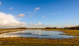 Πλημμυρισμένη επιφύλαξη φύσης με τους ανεμοστροβίλους στο υπόβαθρο Στοκ Εικόνα