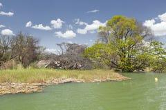 Πλημμυρισμένο θέρετρο στη λίμνη Baringo στην Κένυα. Στοκ φωτογραφία με δικαίωμα ελεύθερης χρήσης