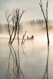 Πλημμυρισμένο φως δέλτα Στοκ εικόνα με δικαίωμα ελεύθερης χρήσης