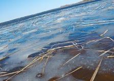 Πλημμύρα άνοιξη στη λίμνη Στοκ Φωτογραφίες