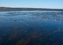 Πλημμύρα άνοιξη στη λίμνη Στοκ εικόνα με δικαίωμα ελεύθερης χρήσης