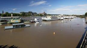 Πλημμύρα στη Δρέσδη Στοκ φωτογραφίες με δικαίωμα ελεύθερης χρήσης
