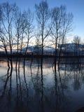 Πλημμύρα του ποταμού την άνοιξη στο ηλιοβασίλεμα Στοκ φωτογραφίες με δικαίωμα ελεύθερης χρήσης
