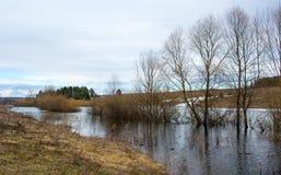 Πλημμύρες άνοιξη στις απομακρυσμένες αγροτικές περιοχές Στοκ Φωτογραφία