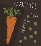 Πληροφορίες του καρότου, έννοια γεγονότων διατροφής Στοκ εικόνα με δικαίωμα ελεύθερης χρήσης