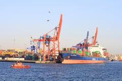 Πλοίου-ακτής γερανοί που λειτουργούν στο σκάφος εμπορευματοκιβωτίων Στοκ εικόνα με δικαίωμα ελεύθερης χρήσης