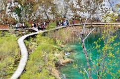 Πλούσια χρώματα του εθνικού πάρκου λιμνών Plitvice, Κροατία Στοκ Εικόνες