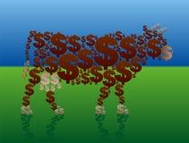 Πλούσιο πράσινο λιβάδι αγελάδων μετρητών Στοκ Εικόνα