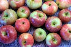 Πλυμένα κόκκινα και πράσινα ώριμα μήλα με τις πτώσεις νερού Στοκ φωτογραφία με δικαίωμα ελεύθερης χρήσης