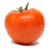 Πλυμένη ντομάτα Στοκ φωτογραφίες με δικαίωμα ελεύθερης χρήσης