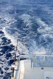 Ράβδος και εξέλικτρο μεγάλων θαλασσίων βαθών που αλιεύουν από τη βάρκα Στοκ εικόνες με δικαίωμα ελεύθερης χρήσης