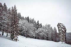 Ράβδος Hercules στο Pieskowa Skala (Πολωνία) Στοκ Φωτογραφίες