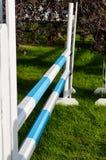 Ράγες άλματος αλόγων Στοκ εικόνες με δικαίωμα ελεύθερης χρήσης
