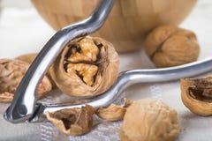 Ράγισμα και ξεφλούδισμα των ξύλων καρυδιάς στοκ εικόνα με δικαίωμα ελεύθερης χρήσης