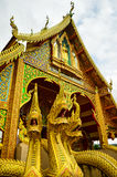 δράκος χρυσός Στοκ Εικόνα