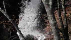 Ράντισμα καταρρακτών στο βράχο στο δάσος φιλμ μικρού μήκους