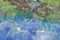 Ράντισμα νερού στην αποβάθρα Στοκ φωτογραφία με δικαίωμα ελεύθερης χρήσης