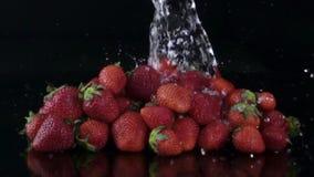 Ράντισμα νερού στις φρέσκες φράουλες απόθεμα βίντεο