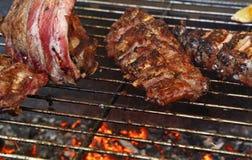 Ράφια των μπριζολών χοιρινού κρέατος στη σχάρα σχαρών πυρκαγιάς Στοκ Φωτογραφία