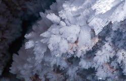 ράφι εικόνων πάγου κρυστάλλων της Ανταρκτικής που λαμβάνεται Στοκ φωτογραφίες με δικαίωμα ελεύθερης χρήσης
