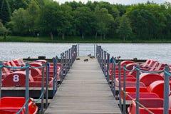 Ράφι σε μια λίμνη Στοκ φωτογραφία με δικαίωμα ελεύθερης χρήσης