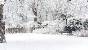 Ράχη καλαθοσφαίρισης στο χιόνι στοκ εικόνες
