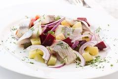 ρέγγες salat Στοκ Φωτογραφίες