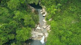 Ρέοντας τροπικός ποταμός και δύσκολος καταρράκτης στο δάσος μεταξύ των πράσινων δέντρων και των εγκαταστάσεων Δύσκολος ποταμός άπ φιλμ μικρού μήκους
