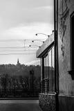 Ρήνος rudesheim Στοκ εικόνα με δικαίωμα ελεύθερης χρήσης