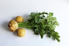 Ρίζα σέλινου και δύο πατάτες Στοκ φωτογραφίες με δικαίωμα ελεύθερης χρήσης