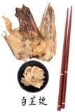 Ρίζα χορταριών της Angelica Στοκ φωτογραφία με δικαίωμα ελεύθερης χρήσης
