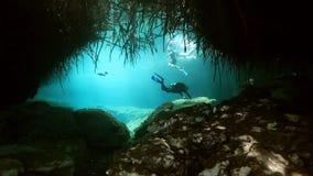 Ρίζες και βράχοι δέντρων Yucatan στο μεξικάνικο cenote φιλμ μικρού μήκους