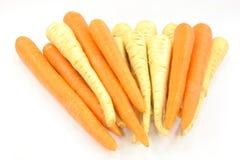 ρίζες παστινακών καρότων στοκ φωτογραφία με δικαίωμα ελεύθερης χρήσης