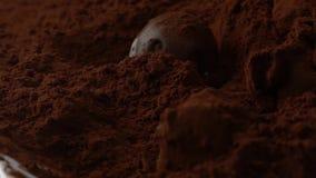 Ρίξτε την καραμέλα στη σοκολάτα απόθεμα βίντεο
