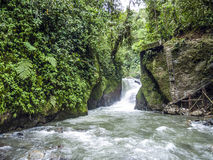 Ρίο Mindo, δυτικός Ισημερινός, ποταμός Στοκ Φωτογραφία