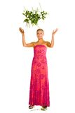 ρίψη εφήβων τριαντάφυλλων &alph Στοκ φωτογραφίες με δικαίωμα ελεύθερης χρήσης