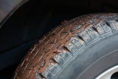Ραβδί λάσπης στο μέτωπο ροδών του αυτοκινήτου Στοκ Εικόνα