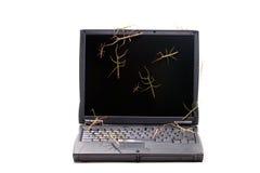 ραβδί προγραμματιστικών λ& στοκ εικόνες με δικαίωμα ελεύθερης χρήσης
